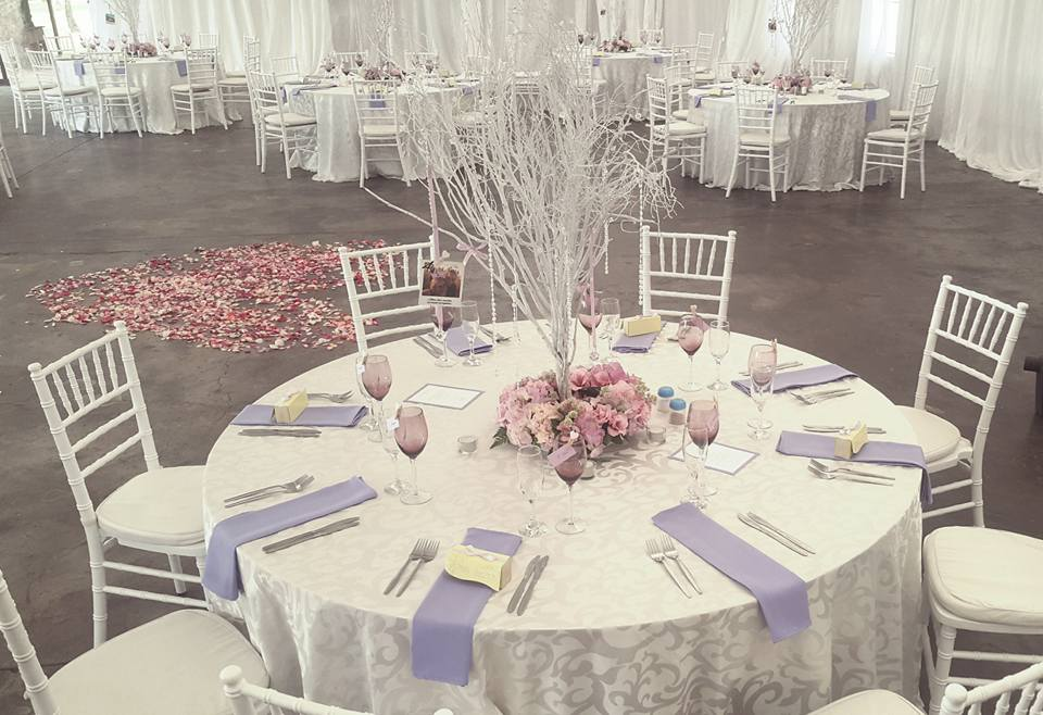 Wedding Venue - Ice theme