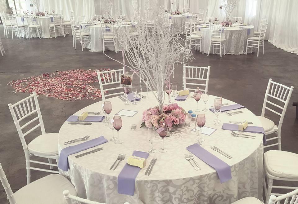 Wedding Venue - Ice theme